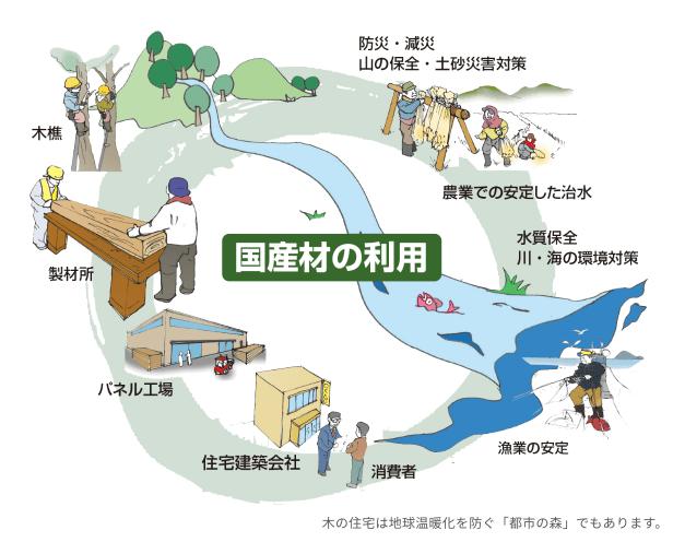 国産材の利用イメージ